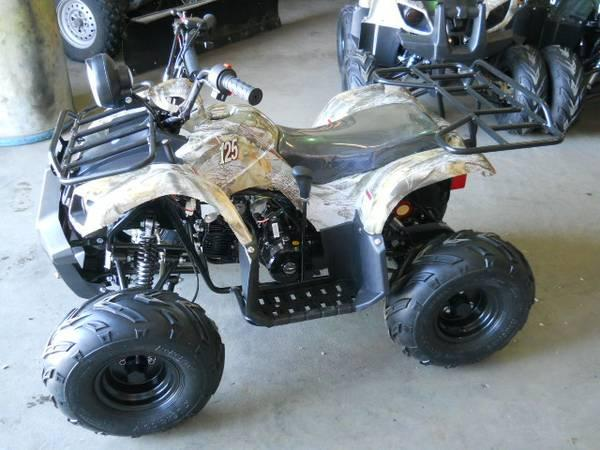 youth size atv 125 cc for sale in oconto wisconsin classified. Black Bedroom Furniture Sets. Home Design Ideas