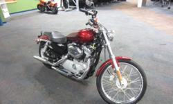 VERY NICE 2009 HARLEY DAVIDSON SPORTSTER XL883C CUSTOM WITH ONLY 2,562 MILES! Features include: Evolution 53.9 cubic inch air cooled engine w/electronic sequential port fuel injection, 5-speed transmi