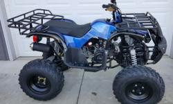 Brand New never ridden ATV. Zero Miles. New with tags. Ride now on a new ATV for a fraction of the cost at a Dealer. 6 month warranty.