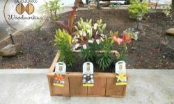 Cedar Flower / Planter Boxes. Great for vegetables or flowers. Dimensions (Approx.): 23 1/2 in X 16 3/4 in X 8 1/2 in. The planting area is 21 in X 14 in. Each planter box is made with grade # 1 weste