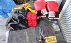 This is everlast spped bag and heavy bag set. this is a 60 lb. bag with three sets of everlast gloves, an unused/unopened mouth piece, and used wraps. I will certainly likewise toss in a title boxing