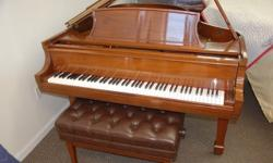 Steinway Crown Jewel Grand Piano, model L, made in 1998. Beautiful polished walnut case, 510 in length. We have just refurbished and regulated this piano to our exacting standards. Comes with a phenom