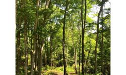 Great elevated homesite for sale in beautiful gated community! Located on Trailwood Drive in the Falling Waters community, this homesite would be perfect for a nice mountain getaway. Falling Waters of