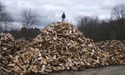 I have plenty of Fire Wood, (red oak, white oak, chestnut oak, hickory, maple ash ect.) all has been cut and split for 10 months now. ready to burn this year. i have as much as you need endless supply