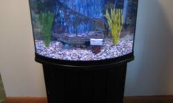 Fish Tank for Sale with Bow-Front Aquarium View. It comes with an all-black stand, heater, filter, tank, and light. I am not sure of its gallon size, but it is 26in X 10in. With the stand and tank it