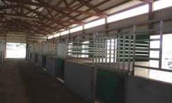 Large Stalls & Turnouts, Individual Tack Lockers. Twice daily feeding of Quality Grass Hay,daily cleaning of stalls & turnouts, large round pen, & parking for trailers. Experienced on site care. Call