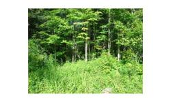 New York wooded land for sale: The property is almost entirely wooded with a mix of maple, ash, cherry, oak, beech, hemlock, white pine and other species. There is a small open goldenrod field within