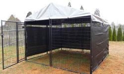 Off Ground Dog Kennel Price Reduced Immediate Sale