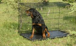 Durable pet crate designed with convenient features in mind Satin black Electro-Coat finish Ideal for pets 71 to 90 pounds Easy setup with no tools required Fold and Carry Configuration Safe and secur