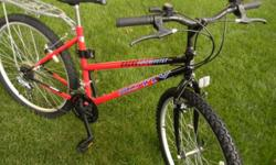 """This is a like new MOTIV BACKCOUNTRY MTB, womans, mountain bike with Shimano components with rear rack in good technical and aesthetic condition. It has 18 speeds, with a17"""" frame with seat height adj"""