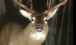 Skunk River Outfitters is providing deer hunts in NE Missouri, Lewis County for the 1st week of November. We are just doing 2 groups of 4 hunters. 900 acres of prime big buck country. All inclusive fo