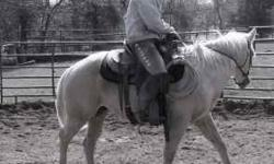 SS Cutting Horses and Training is now located at Los Piños Equestrian Center!!! We offer a wide variety of training services (Cutting training, colt starting, finish training, re-working of problem h