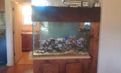 Selling my 110 gallon saltwater tank. Everything is included. I have a 55 gallon sump I have a skimmer custom t5 lighting. Stand canopy and over 200# of live rock. YOu can not by the rock itself at th