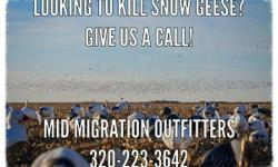 SPRING SNOW GOOSE HUNTING.  www.midmigrationoutfitters.com