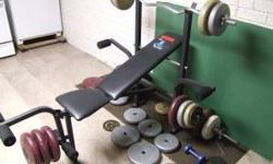 weight-bench-weights-50-