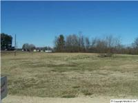 ONE ACRE COMMERCIAL LOT IN THE CENTER OF ARAB. HOME HAS