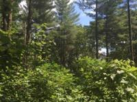 325 Acres of pristine, scenic woodland including white