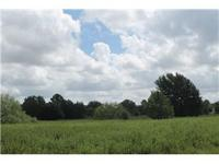 This 7+ acre property is situated with roadways on