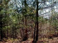 Lake access lot in Nottley Falls Estate 1/2 block from