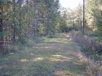 Reduced $2000! I have a 1/2 Acre Lot for sale in