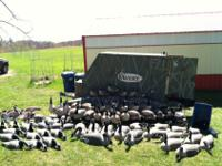 Numerous top of the line Goose decoys and full bodies