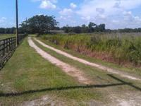 9415 Costine Road Lakeland Fl 33809 1.9 acres for