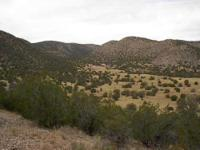 348 acres at Lincoln,beautiful western setting, highway