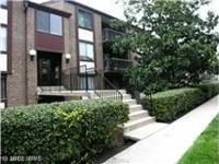 Gorgeous fully renovated 1 Br Condo , open kitchen with