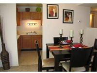 Bright Spacious, Large Floorplans, Lofts and