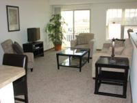 Studio,1, 2, and 3 Bedrooms with Private Entrances,