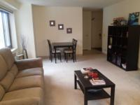 1 BR apartment available to sublease April through