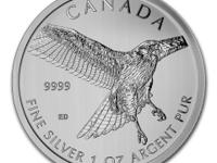 1 oz 2015 Canadian Birds of Prey Series - Red Tailed