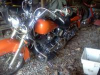 2000 harley davidson softtail this bike is ridden by a