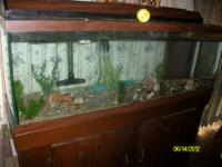 I have a 10 gallon aquarium for sale. Comes with a