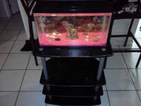 I have a 10 gallon Fish Tank that I am no longer using.