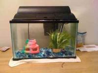 I have a 10 gallon fish tank that needs a new home