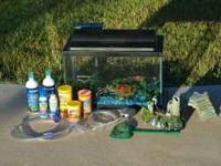 10-gallon fish tank COMPLETE SETUP! Comes with rock,