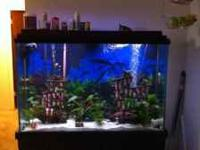 Selling My 100 gallon fish tank aqauruim. Comes with