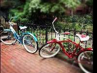 Two Schwinn Cruiser Male and Female BikesMy husband and