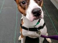 10768 Chance's story Hello! My name is Chance. I am