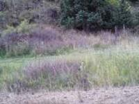 20 undeveloped lots in tellar county colorado at