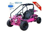 New 110cc Go Kart Fully Automatic with Reverse 4