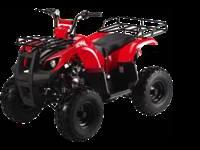 110cc Youth Kids SPORTSMAN style ATV 4 wheeler Racks