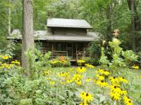 Antique log cabin at entrance to Stonebridge! Get the