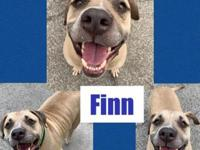 My story Hello! My name is Finn. I am a 4 year old