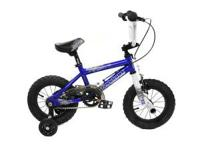 12 inch blue boys Tony Hawk bicycle. Stored inside most