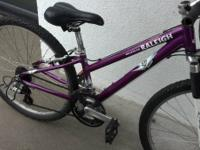 "I have a 12"" ladies Raleigh Mojave 2.0 mountain bicycle"