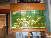 120 gallon tank. includes stand, canopy. has awesome