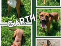 My story Hello! My name is Garth. I am a 2 year old