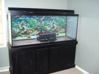 For sale is a used 125 gallon aquarium with a Perfecto
